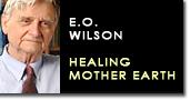Eo wilson mother earth