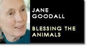 Jane goodall blessing