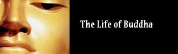 Life-of-Buddha